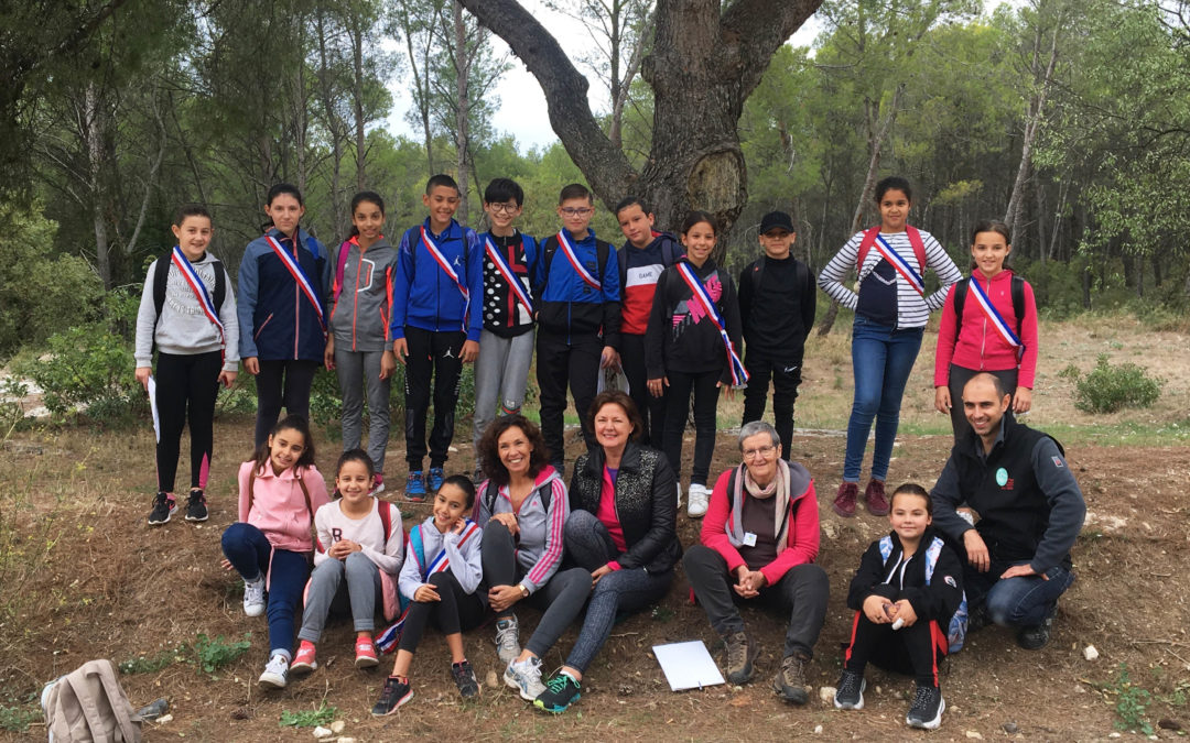 Suite du défi du parc des Alpilles/ZDPA avec les jeunes du CMJ de Tarascon