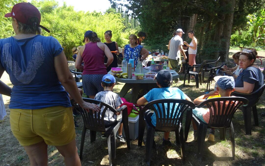 Pique-niques zéro déchet à Bambous en Provence d'Eyragues